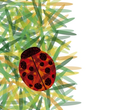 Ladybug over leafs with blank space to write your own text Stock Vector - 16675554
