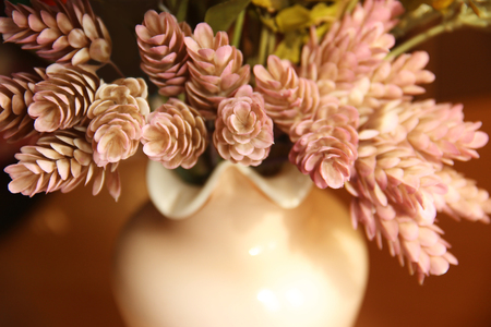 Ornamental plants cones hops in a pink vase stylized as postcards mid-twentieth century.