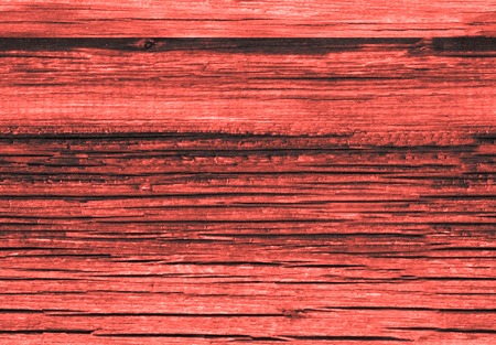 Background texture of old living coral red painted wooden lining boards wall. Living coral color background. Color of the year 2019. Main trend concept.