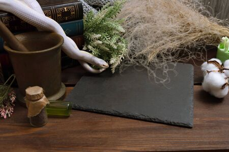 White American royal snake on the background of witchcraft accessories, alchemical instruments and ingredients. Mock up of empty tile dark slate. herbs, mortar, feather and cotton bolls. Halloween.