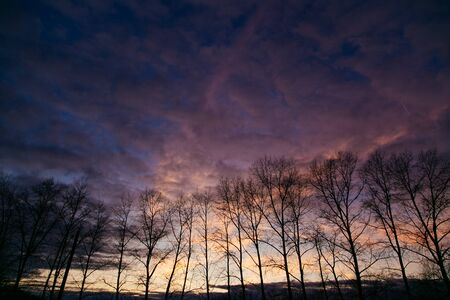 Beautiful colorful sunset above the dark autumn trees silhouettes