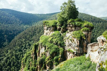 Beautiful nature of Caucasus mountains in summer seasons, green forest on rocks, on the road to thermal springs Gil Su, Russia