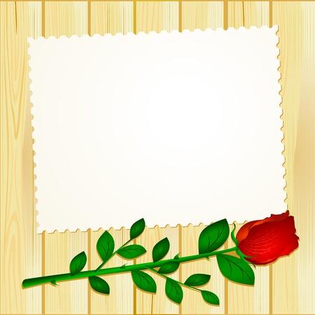빨간 장미와 나무에 흰색 카드, 벡터