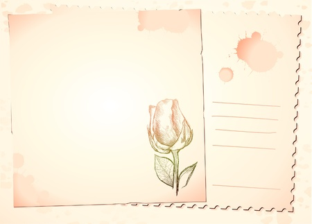 free vintage background: Vintage background with rose, vector image