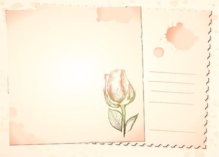 postcard background: Vintage background with rose, vector image
