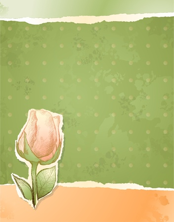 Vintage background with handwriting rose, vector Stock Vector - 10204218