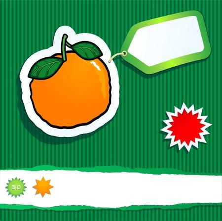 mandarin orange: Bio background with orange and label. Vector image