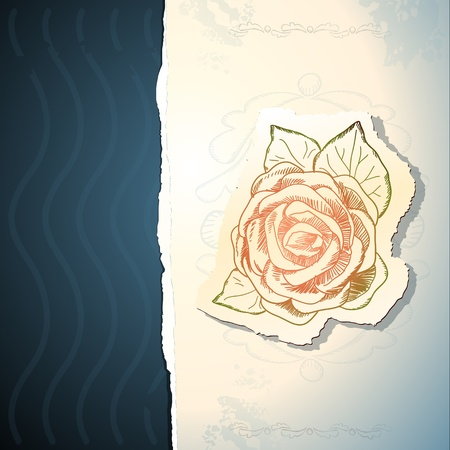 old paper texture: Invitation with rose, vector background
