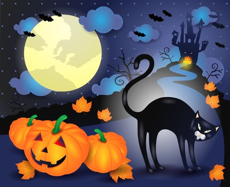 Halloween illustration with black cat and pumpkins. Vector eps10