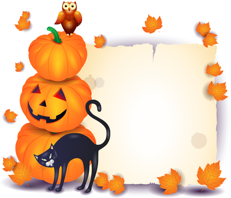 Halloween background with parchment, pumpkin, cat isolated on white. Vector illustration eps10