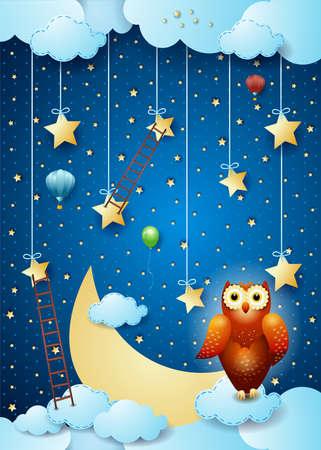 Surreal sky by night with owl and ladders, vector illustration eps10
