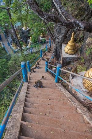 sua: Wat Thum Sua Krabi,thailand. Stock Photo