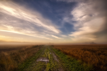 Pathway through autumn fields in misty sunrise  photo