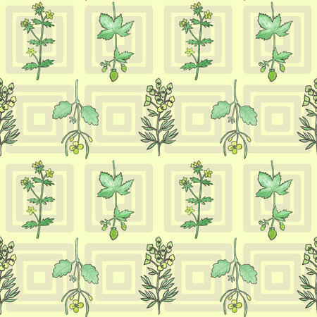 watercolour: Seamless pattern with hand drawn watercolour herbs Illustration