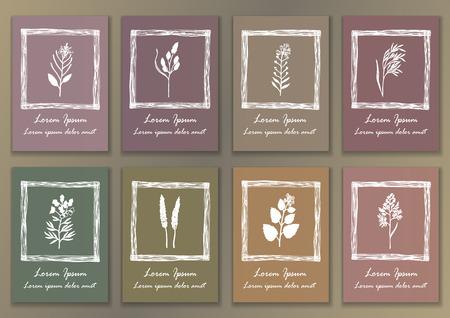 Ajuste Vintage Posters con hierbas de tinta dibujado a mano Foto de archivo - 42511347