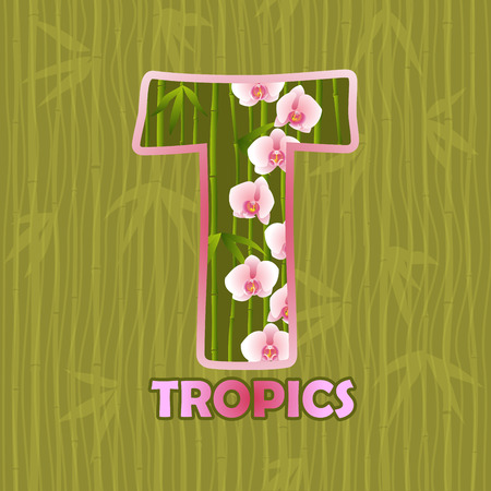 tropics: Tropics. Print background