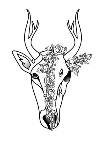leven en dood: Deer - life and death