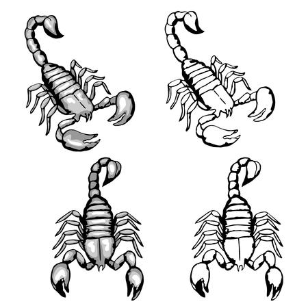 Set of hand drawn doodle scorpions Illustration
