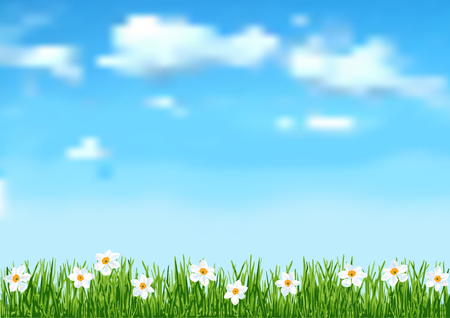 blue sky and fields: Background with grass and white flowers Illustration