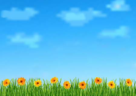 orange gerbera: Background with grass and orange gerbera flowers Illustration