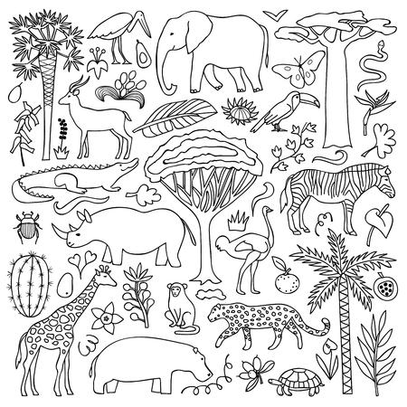 Ilustración del vector con los animales y las plantas africanas Foto de archivo - 51920436