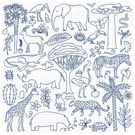 fauna: Vector illustration with African animals and plants on squared paper Illustration
