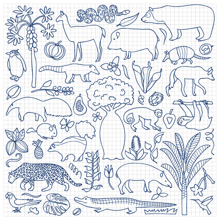 fauna: Vector illustration with South American animals and plants on squared paper