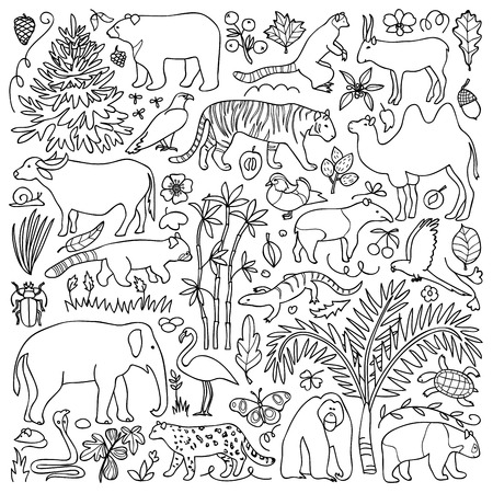 animal fauna: illustration with Asian animals and plants