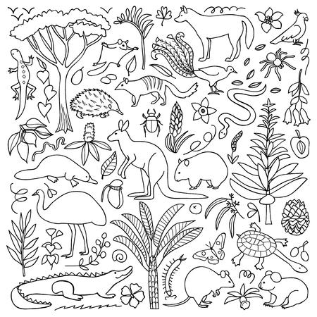 australian animals: illustration with Australian animals and plants Illustration