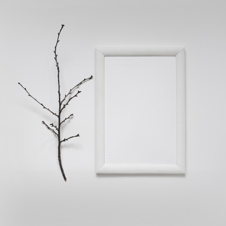 presentation background: Mock up with white wooden Frame and branch