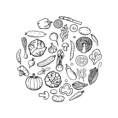 Vegetables hand drawn elements. Vector illustration of doodle vegetables