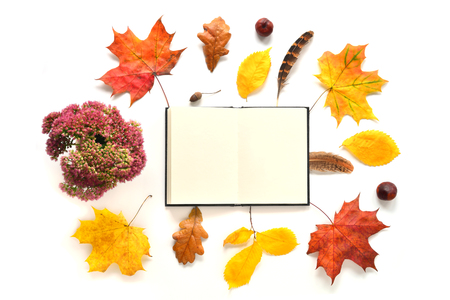 composition notebook: Composition with notebook, flowers and autumn leaves. Top view on white background. Autumn flat lay. Mock up for art work with workplace