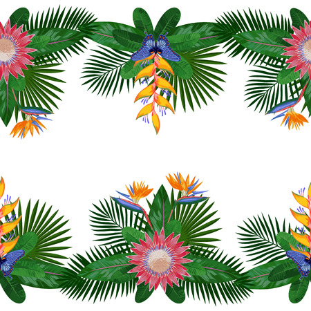 Tropical Double Seamless Border Illustration