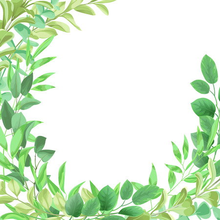Template frame from greenery leaf illustration on white background.