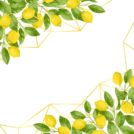 Luxury Lemon Brunches Background Çizim