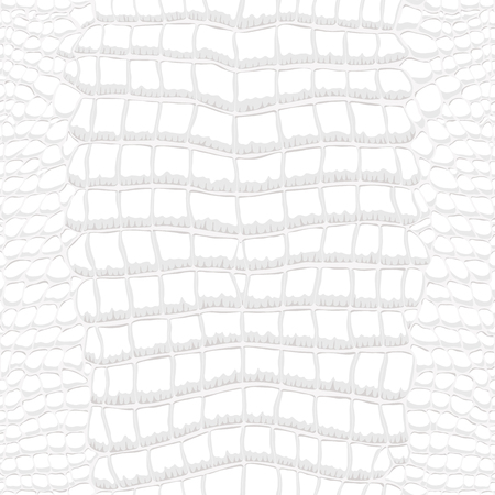Crocodile Skin Gray and White Seamless Pattern Banque d'images