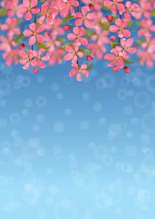 Pink blossoming cherry branches with bokeh effect
