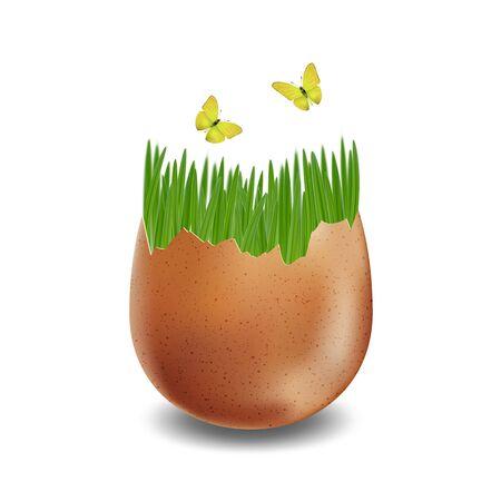 Vector brown broken eggs on white background Foto de archivo - 138171289