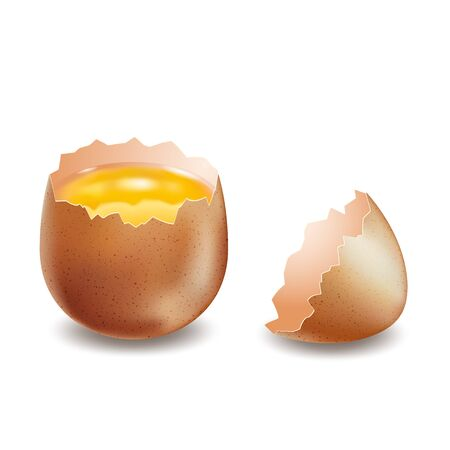 Vector brown broken eggs on white background Foto de archivo - 138171978