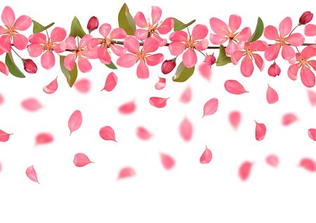 Seamless pattern from cherry blossom, sakura, almond flowers and falling petals. Vector spring repeat border, background, wallpapers, romantic horizon textile print, web banner template with text place.