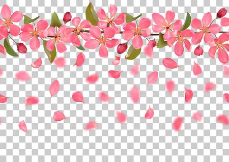 Seamless pattern from cherry blossom, sakura, almond flowers and falling petals on transparent background. Spring repeat border, wallpapers, romantic horizon textile print, web banner with text place.