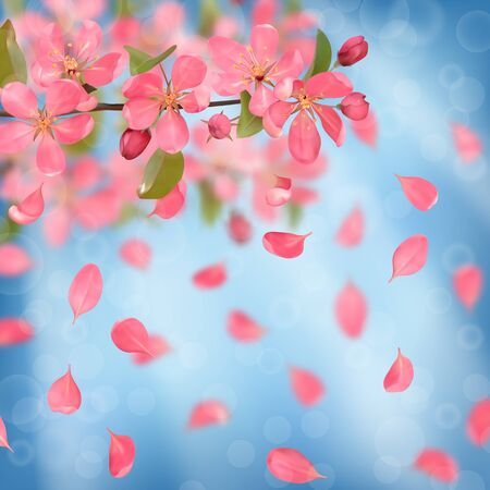 Seamless border from cherry blossom, sakura, almond flowers and falling petals with bokeh effect . Spring pattern for wallpapers, wedding invitations, romantic textile print