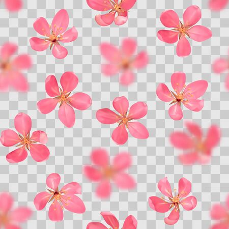 Seamless pattern from cherry blossom, sakura, almond flowers with bokeh effect isolated on transparent background. Vector spring repeat backdrop, wallpapers, poster, wedding invitations, romantic textile print.