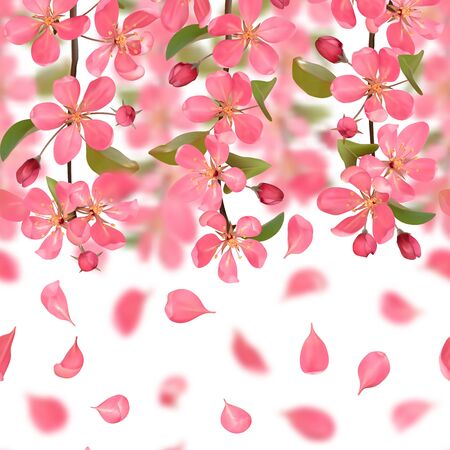Seamless border from cherry blossom, sakura, almond flowers and falling petals with bokeh effect. Vector spring repeat background, wallpapers, poster, wedding invitations, romantic textile print.
