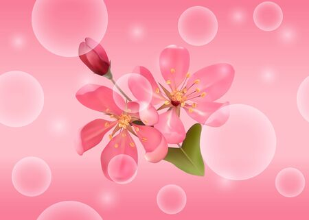 Seamless pattern with pink blossoming cherry for bed linen Illustration