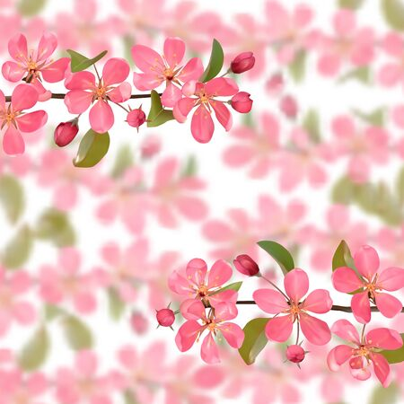 border from cherry blossom, sakura, almond flowers with bokeh effect. Vector spring repeat background, wallpapers, poster, romantic textile print, template and covers with text place. Vector Illustratie