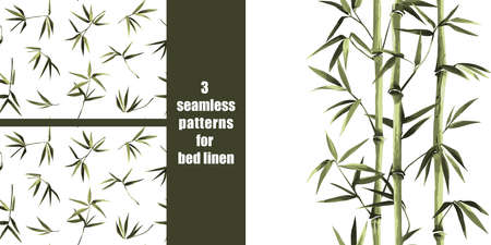 Green bamboo seamless pattern on white background for bed linen, tropical wallpaper, nature textile and home interior print.