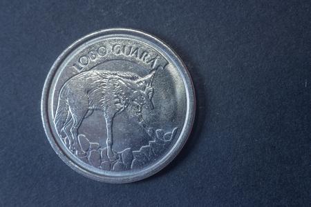 Cien monedas de cabeza de Brasil de 1993, 1993, antiguas y difíciles de encontrar. Foto de archivo - 79807709