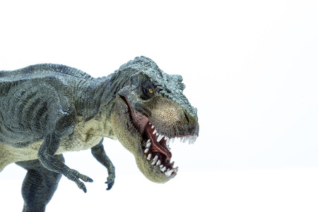 Head close of Green Dinosaur Tyrannosaurus Rex with open mouth in attack position - white background Stock Photo