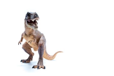 Brown Dinosaur Tyrannosaurus Rex front view - white background